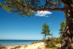 Plage ensoleillée de la mer baltique Images libres de droits