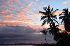 Plage et ciel bleu avec des palmiers par la mer sur le coucher du soleil Photo stock