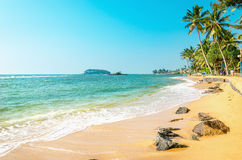Plage exotique avec le sable d'or, Caraïbes photo libre de droits