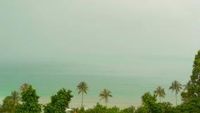 Plage exotique d'île de paradis, plantes tropicales avant la pluie swaing dans le vent banque de vidéos