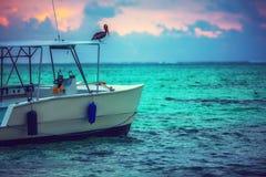 Plage exotique, oiseau pilican et bateau dans Punta, Cana, République Dominicaine  images stock