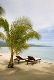 Plage exotique tropicale images libres de droits