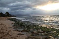 Plage hawaïenne Photographie stock