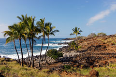 Plage hawaïenne sauvage, Hawaï, Etats-Unis Image libre de droits