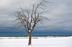 Plage hivernale Photo libre de droits