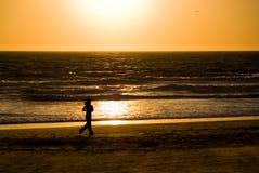 plage la Californie longue Photographie stock