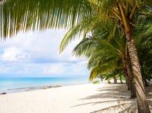Plage la Riviera Maya Mexico d'île de Cozumel image stock