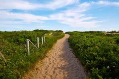 Plage le Massachusetts USA de crique d'harengs de Cape Cod Images stock