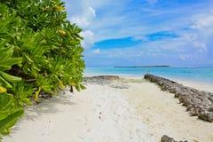 Plage maldivienne Photographie stock