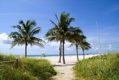 plage Miami image libre de droits