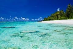 Plage naviguante au schnorchel idéale avec le corail et les palmiers Photo stock