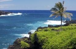 Plage noire de sable de Hana Maui Image stock
