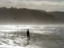 Plage Nouvelle Zélande de Hohope Photographie stock