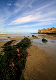 plage Orégon nordique Images libres de droits