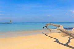 Plage paradisiaque à Phuket Photo libre de droits