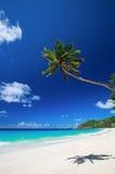 Plage parfaite en Seychelles Photos libres de droits