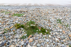 Plage pierreuse à marée basse photo libre de droits