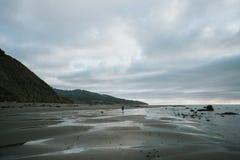 Plage raglane, Nouvelle-Zélande Images libres de droits
