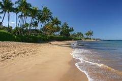 Plage rayée par paume dans Maui Images libres de droits