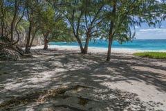 Plage reculée à la baie répugnante, Barbade, les Antilles Image libre de droits