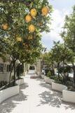 Plage Rhodes d'Ialysos d'entrée d'hôtel de village de Filerimos Images libres de droits
