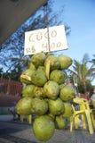 Plage Rio de Janeiro Brazil d'Ipanema de noix de coco Photo stock
