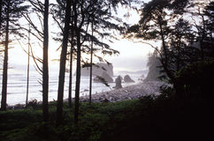 Plage rouge, Washington, Etats-Unis Photo stock