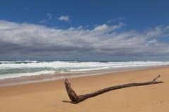 Plage sablonneuse, Australie Image libre de droits