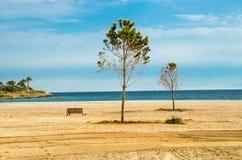 Plage sablonneuse avec des arbres et banc sur le rivage du golfe à Athènes, Gre images stock