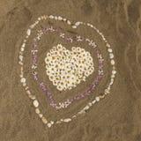 Plage sablonneuse avec des coeurs des fleurs, Corse, France Image stock