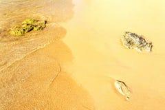 Plage sablonneuse avec des roches Photos libres de droits