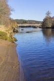 Plage sablonneuse, pont et arbres sur une berge un jour ensoleillé d'hiver Photographie stock libre de droits