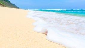 Plage sablonneuse tropicale Images stock