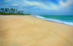 Plage sablonneuse tropicale sur Sri Lanka Photos libres de droits
