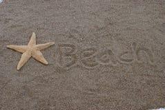 Plage Sandy Starfish photographie stock libre de droits