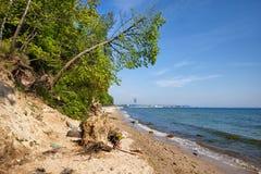 Plage sauvage à Gdynia à la mer baltique Images libres de droits