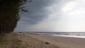 Plage sauvage au Brunei, Asie photos libres de droits