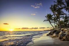 Plage sauvage des Caraïbes, Punta Cana Photographie stock libre de droits