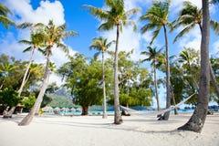 Plage sur Bora Bora photos libres de droits