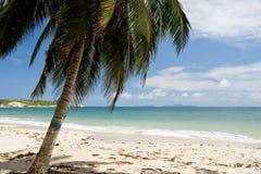 Plage sur l'île de la margarita photo stock