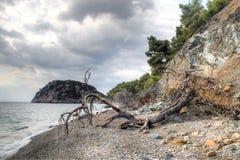 Plage sur l'île de Skopelos, Grèce Image libre de droits