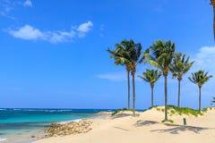 Plage sur l'île tropicale L'eau bleue, sable et palmiers clairs Beau site de vacances, traitement et aquatics dominicain images stock