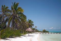 Plage sur l'Isla Contoy Images stock