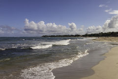 Plage sur l'océan dans les Caraïbe Photographie stock