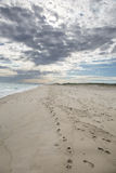 Plage sur le Martha's Vineyard, mA Images libres de droits