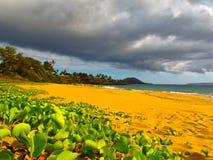 Plage sur Maui Photos stock