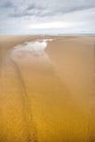 Plage très sauvage d'océan Photos libres de droits