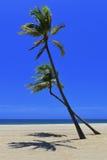 Plage tropicale à distance Photographie stock