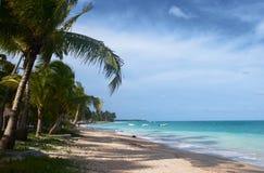 Plage tropicale au Brésil Photographie stock libre de droits