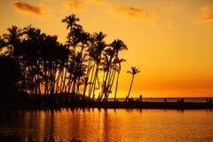 Plage tropicale au coucher du soleil Images stock